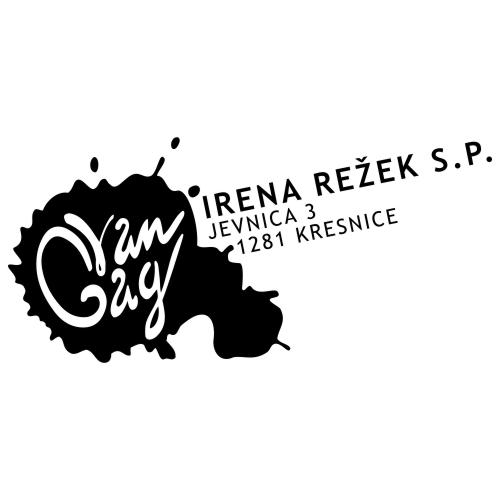www.rise.si - platforma - Irena Režek